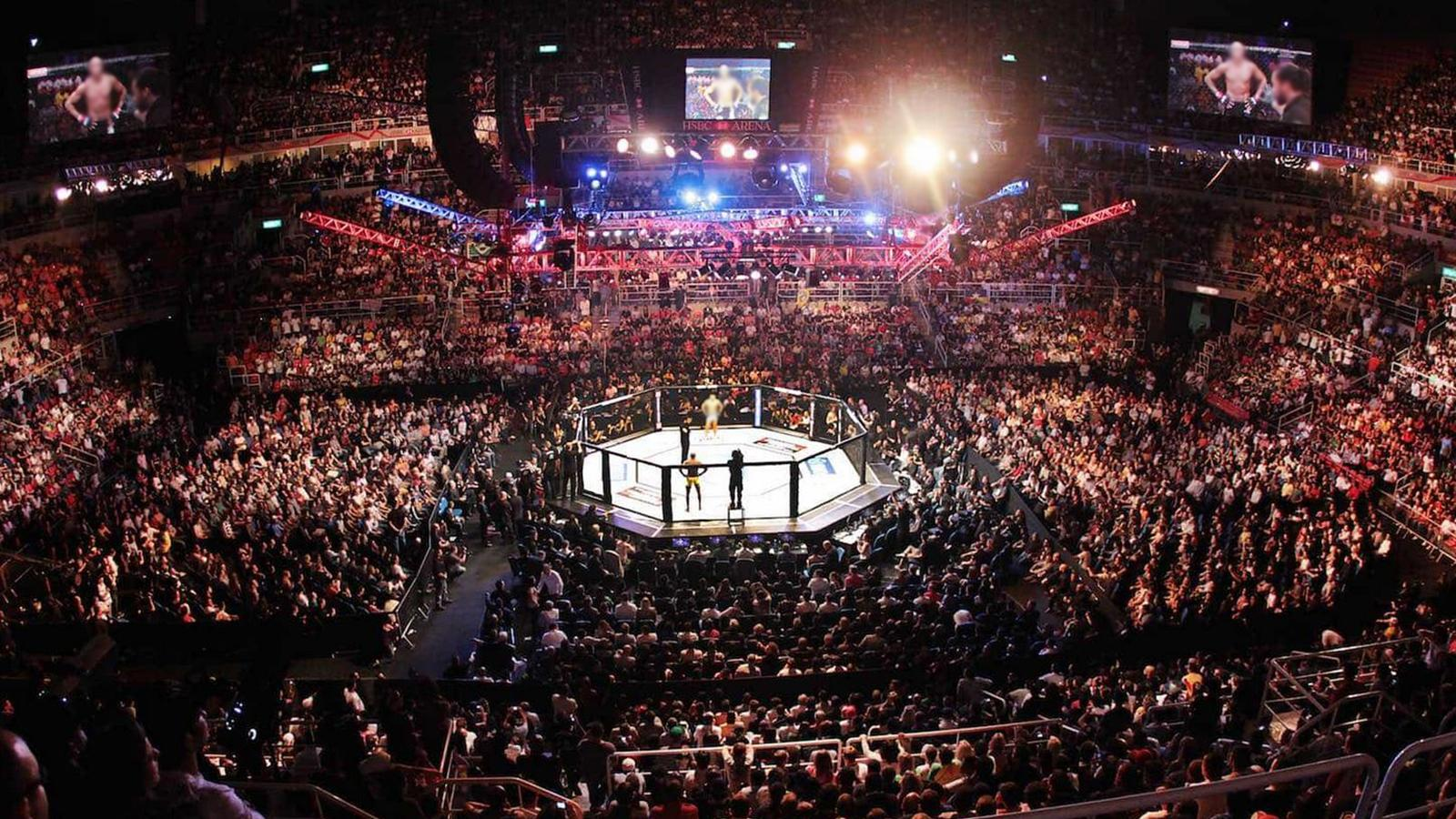 Triton Fights: MMA-Mixed Martial Arts