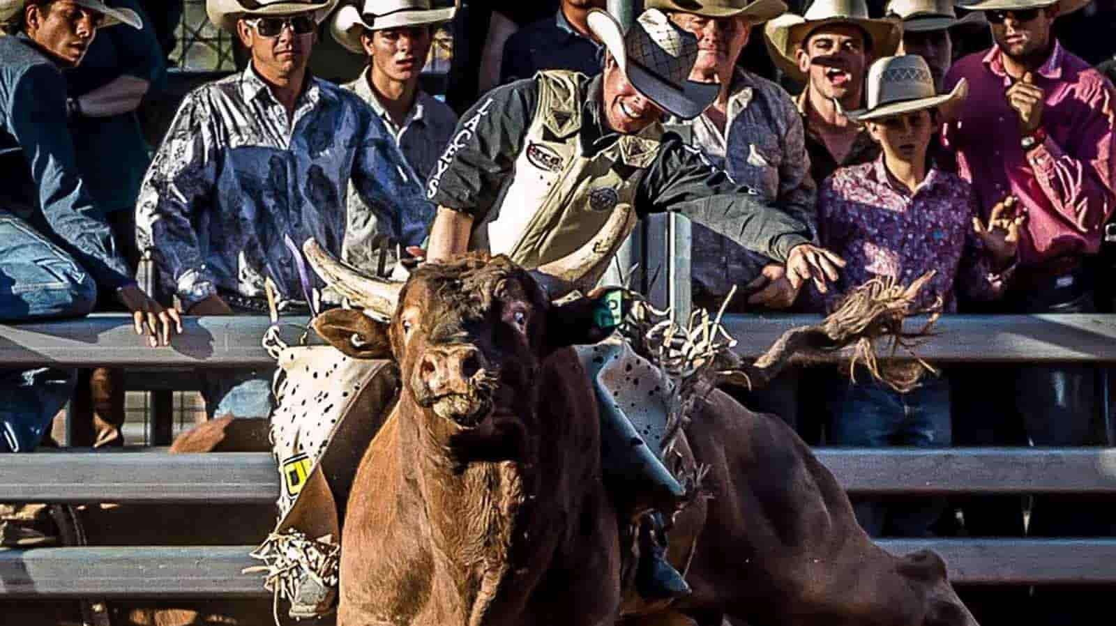 Cheyenne Frontier Days - PRCA Rodeo