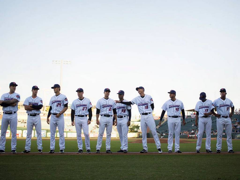 Lansing Lugnuts at Wisconsin Timber Rattlers