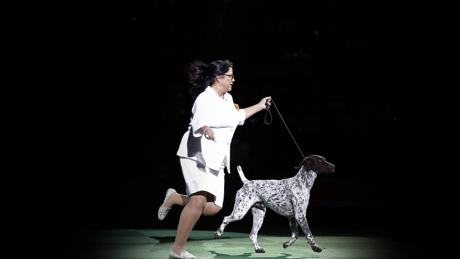 Westminster Kennel Club Dog Show - 2 Day Pass