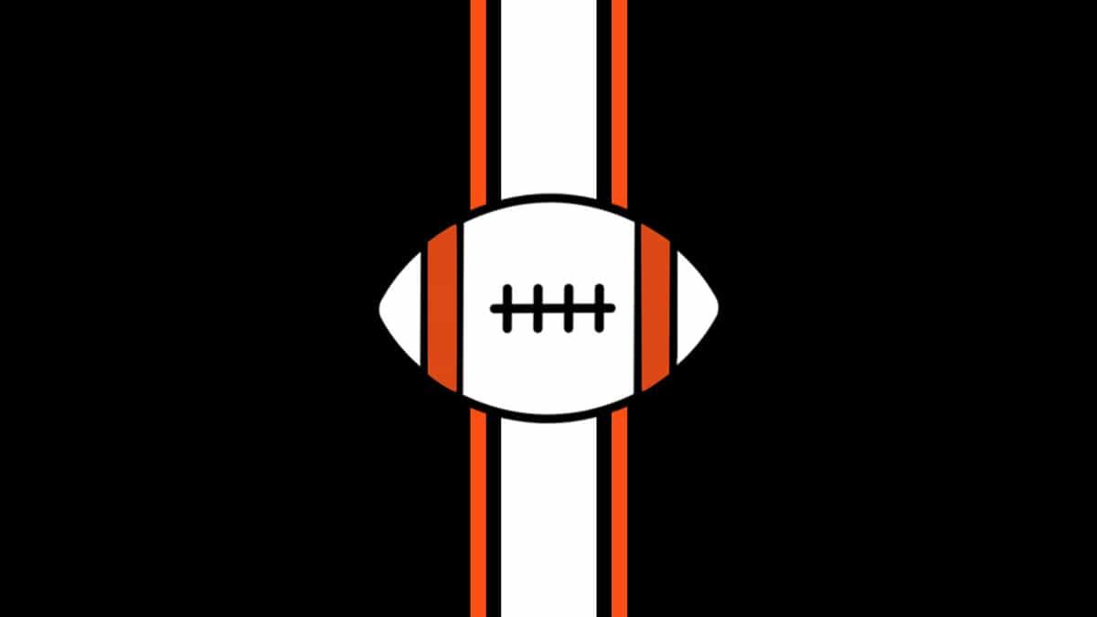 NFL Preseason - Miami Dolphins at Cincinnati Bengals
