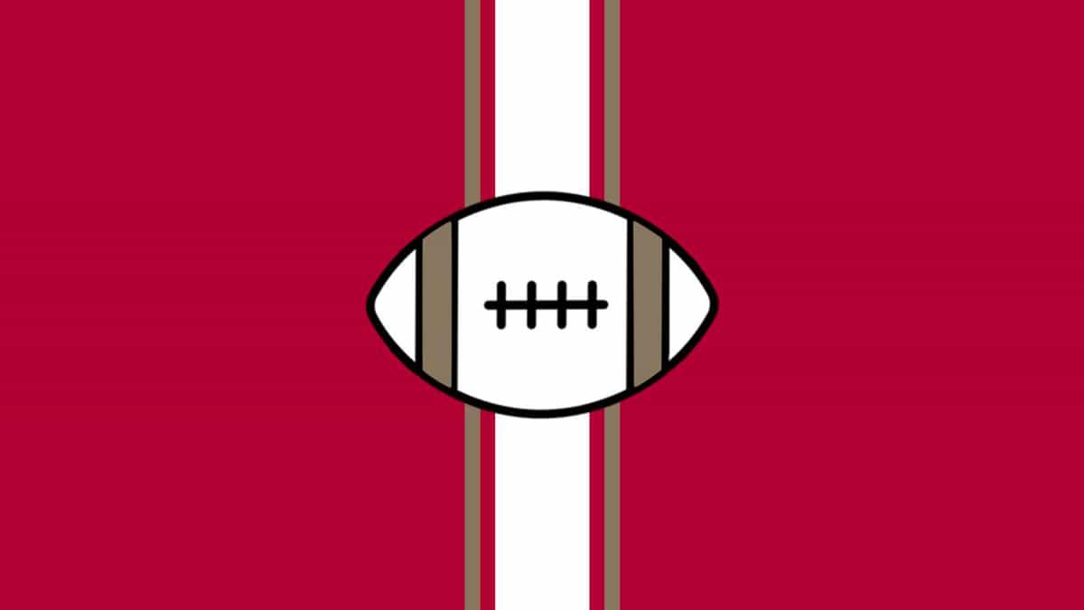 NFL Preseason - Tennessee Titans at Tampa Bay Buccaneers