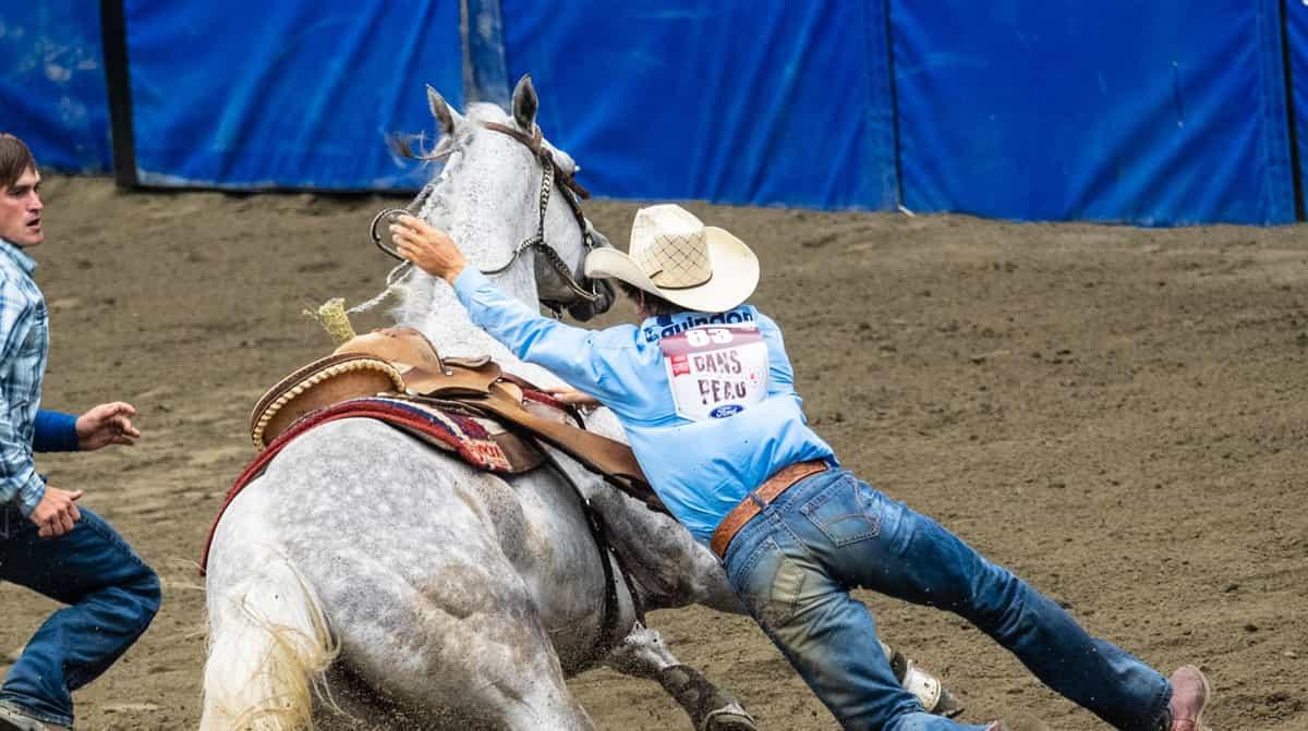 The American Semi Finals Rodeo
