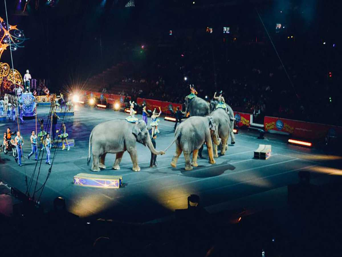 Shrine Circus (Rescheduled from 3/19/2020, 10/15/2020, 3/18/2021)