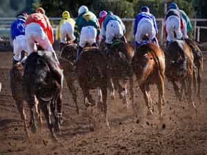 Keeneland Horse Racing Tickets