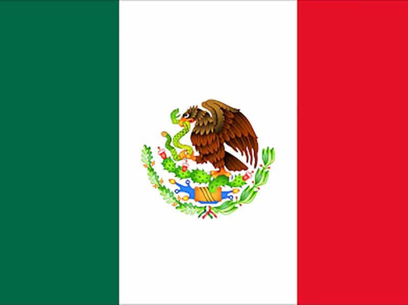 Mexican National Team vs Ecuador