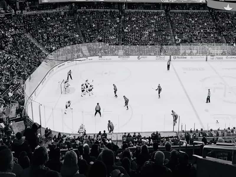 Anaheim Ducks Parking